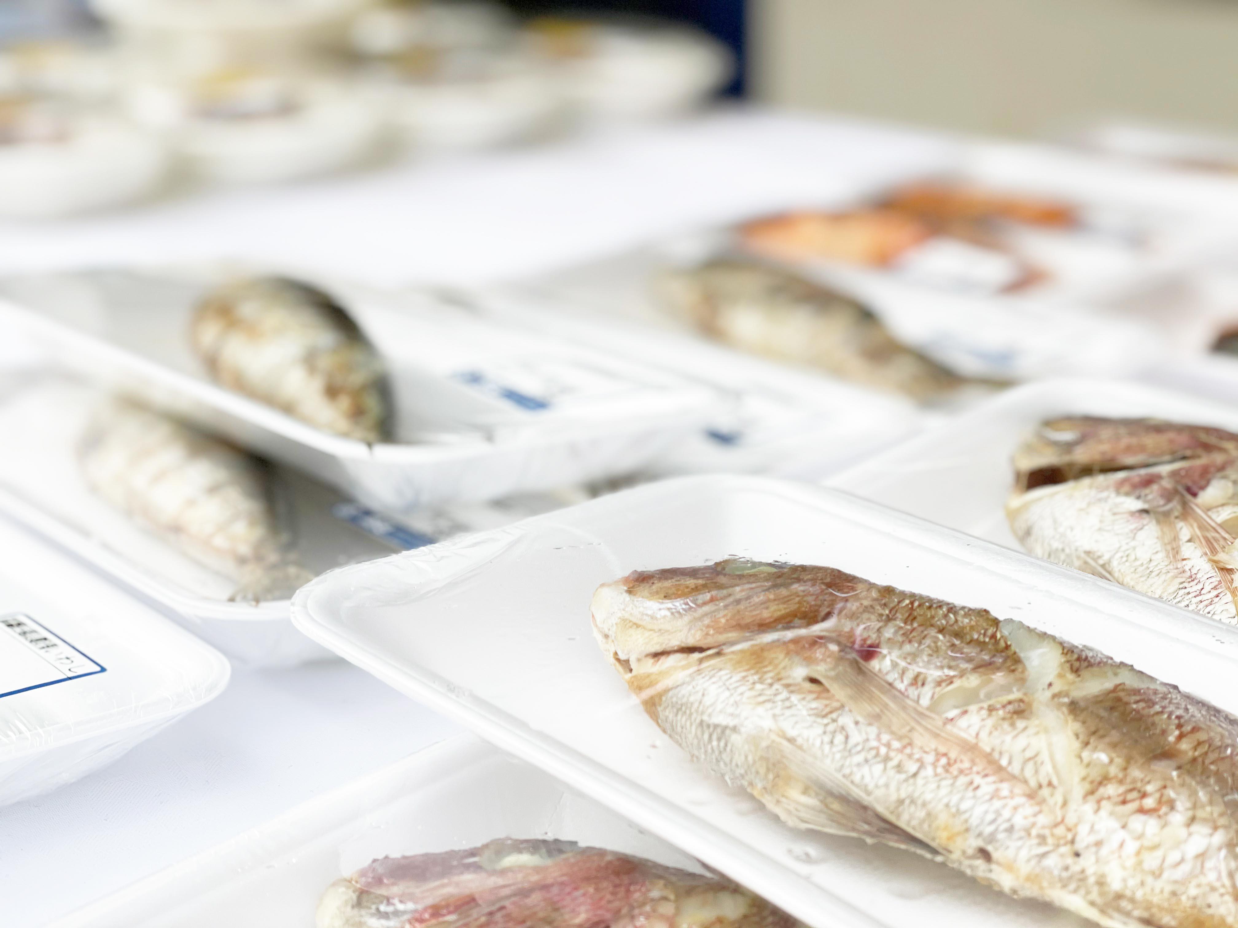 福山市は鯛が美味しい